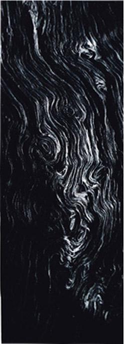 Ki Hwan Kwon/Black Wood/Graphite+Pigment/35x55